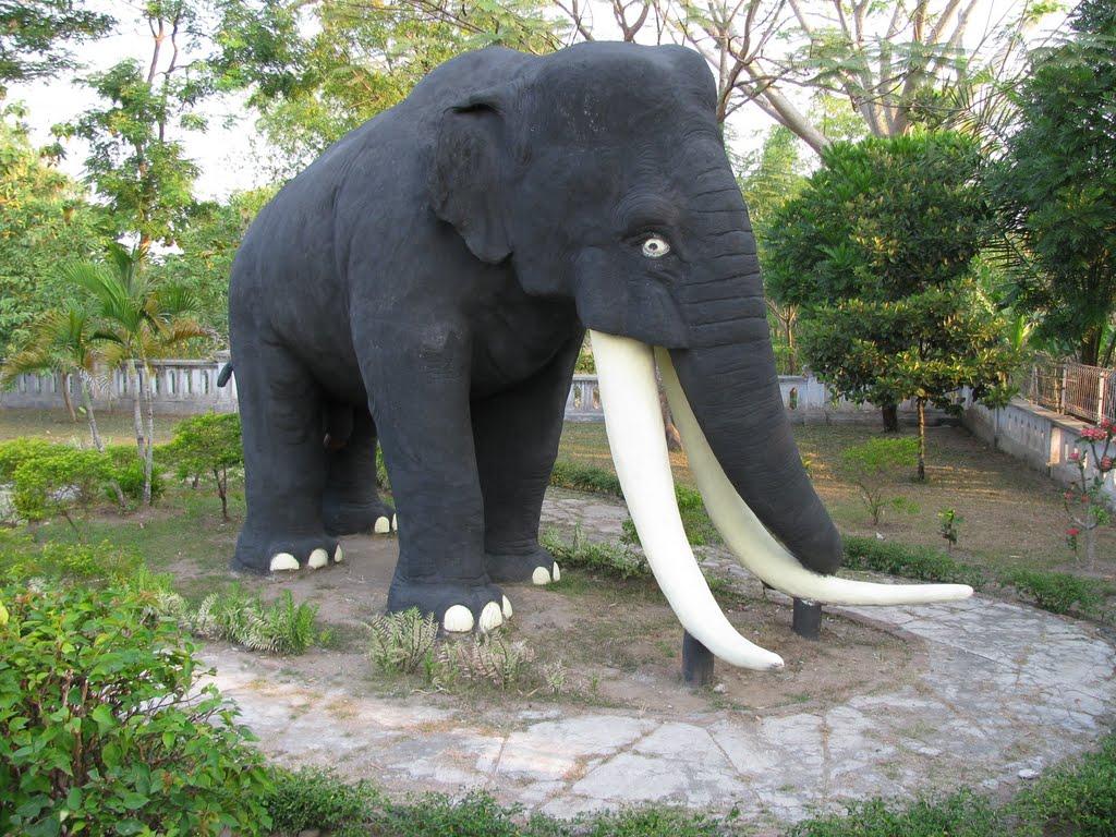 Museum Trinil Pesonamu Kampoengngawi Musium Kab Ngawi