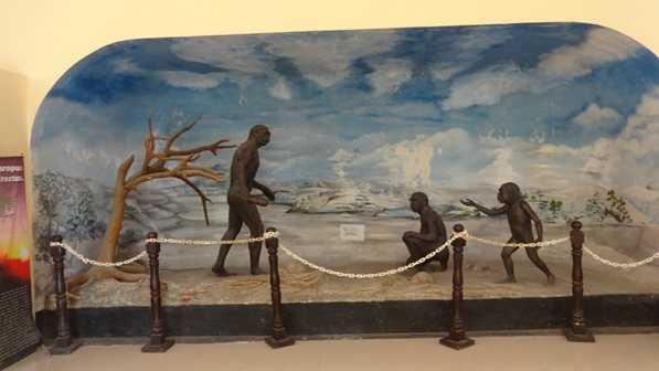 Perlunya Melindungi Museum Trinil Sebagai Warisan Budaya Purbakala Musium Kab