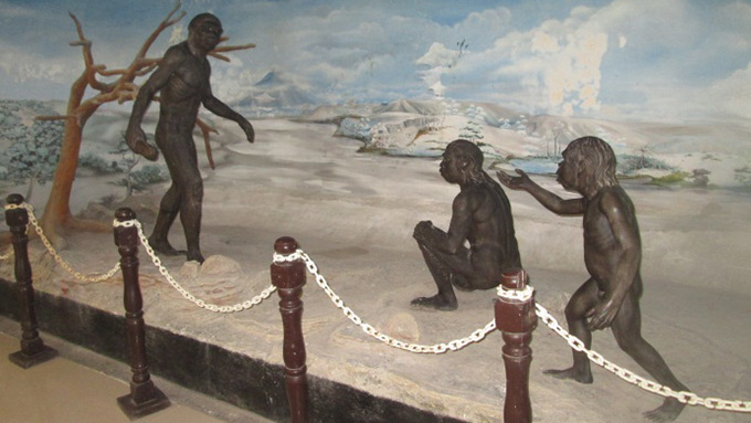 Profil Museum Trinil Kabupaten Ngawi Musium Kab