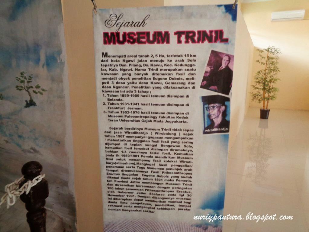 Riypantura Perjalanan Prasejarah Museum Trinil Sejarah Musium Kab Ngawi