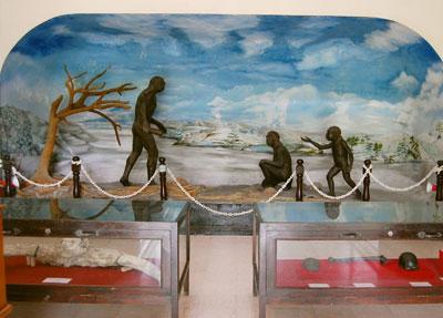 Wisata Sejarah Museum Trinil Bagaskara Fm Trinil21 Jpg Musium Kab