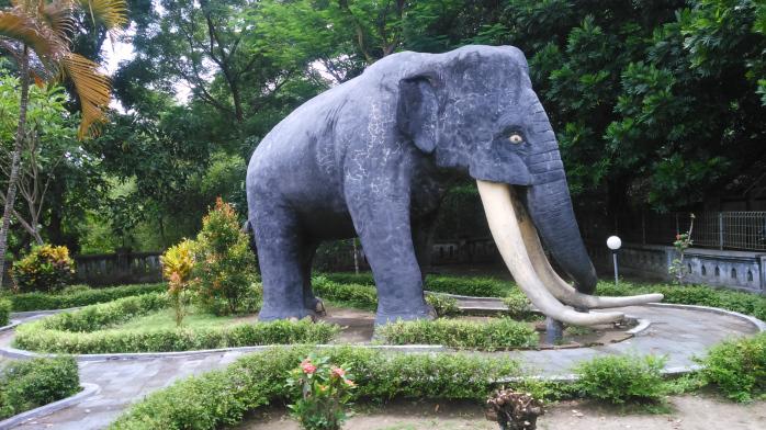 Wisata Sejarah Museum Trinil Ngawi Jawa Timur Ikhsan Kurniawan Lokasi