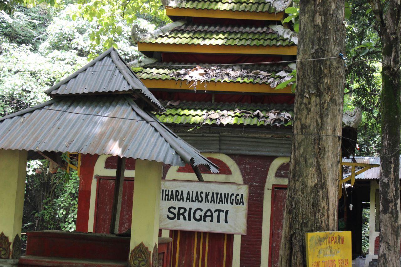Alas Ketonggo Srigati Ngawi Dianggap Melakukan Hal Menyimpang Hari Biasa