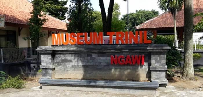 Museum Trinil Ngawi Jpg Reco Banteng Kab