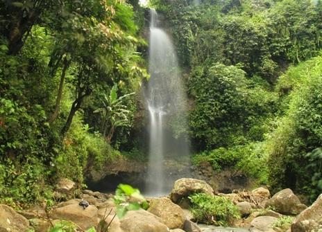 8 Tempat Wisata Madiun Wajib Kunjungi Air Terjun Krecekan Denu