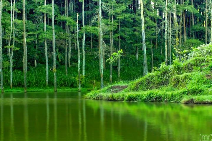 Tempat Wisata Bisa Dikunjungi Ketika Ngawi Jawa Timur Sistem Irigasi
