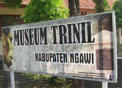 13 Tempat Wista Ngawi Wajib Kunjungi Museum Trinil Terletak Sekitar