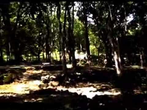 Taman Wisata Tawun Ngawi Flv Youtube Kab