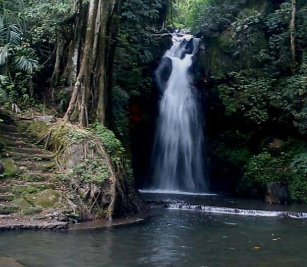 Tempat Wisata Alam Ngawi Jawa Timur Galeri Objek Taman Tawun