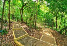 Wisata Watu Jonggol Sine Ngawi Trip Jalan Pananjung Pangandaran Kab