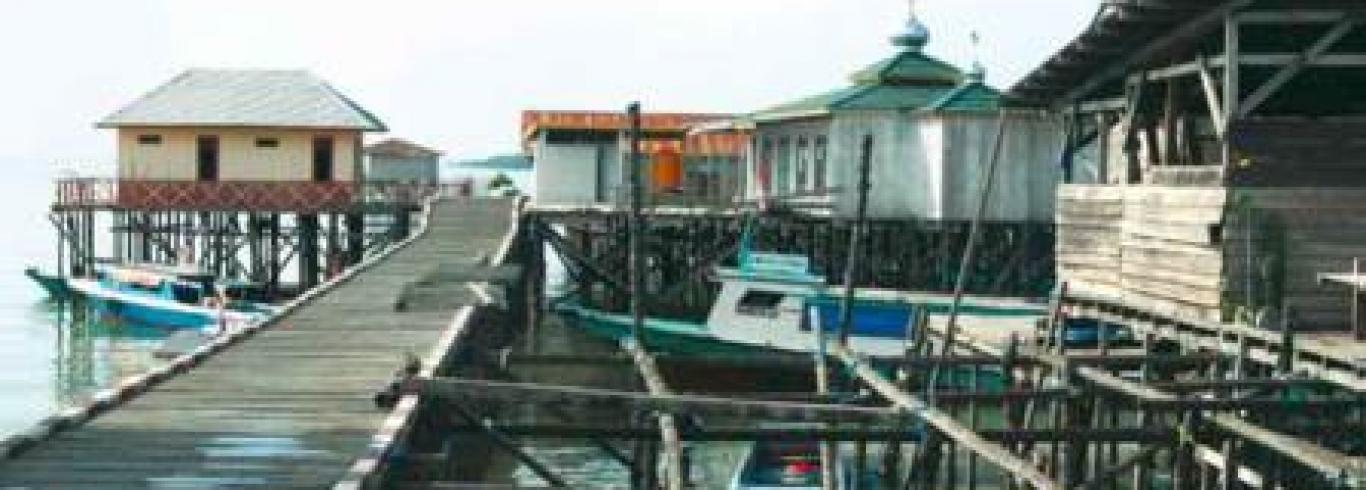 Marine Buddies Kawasan Konservasi Perairan Kabupaten Nunukan Pulau Sinilak Air