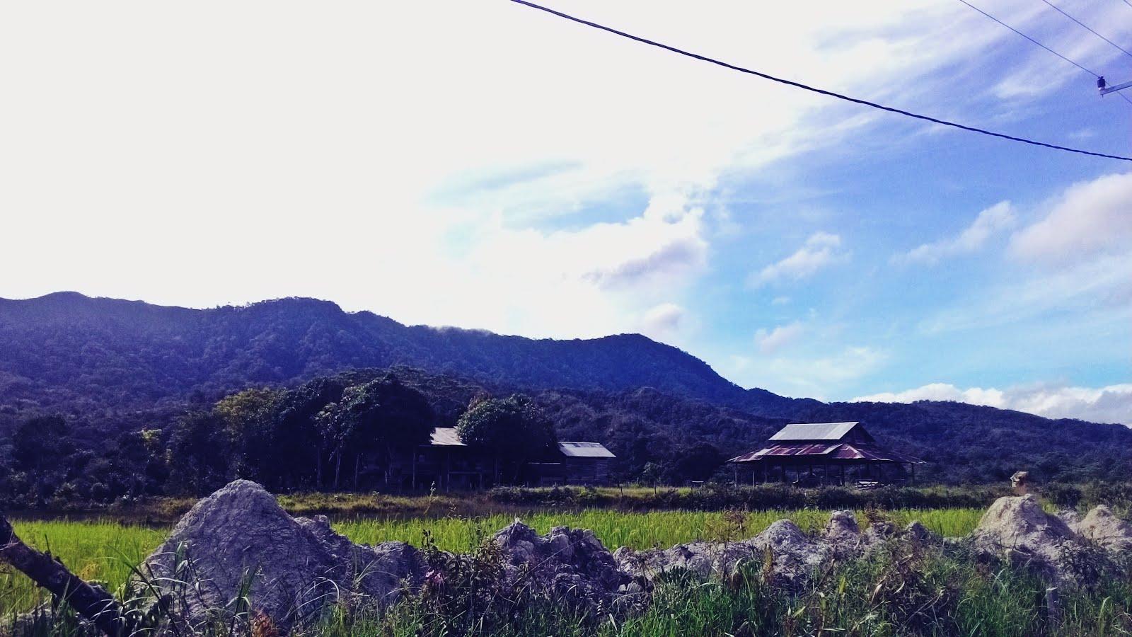 July 2016 Ragil Desa Long Kiwan Kecamatan Krayan Induk Kabupaten