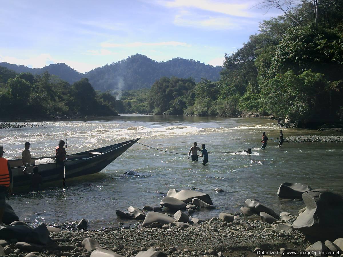 Kayan Mentarang National Park Tours Wildlife Trekking Tour Forest Reserve