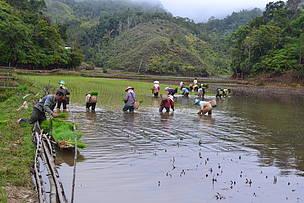 Melirik Potensi Ekowisata Lembah Pegunungan Krayan Wwf Indonesia Anthonius Kalimantan
