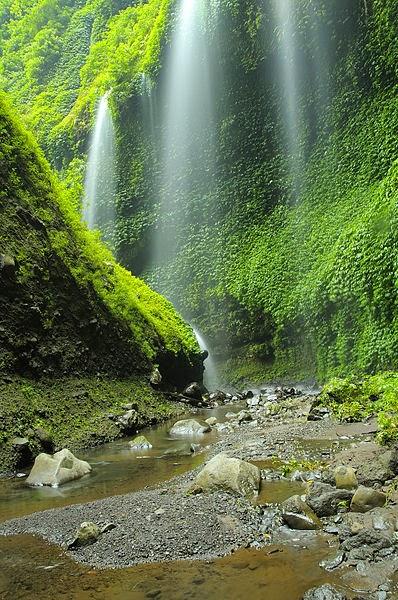 Daftar Tempat Wisata Probolinggo Surabaya Info Tiket Air Terjun Madakaripura