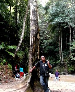 Bintang Mind Obyek Wisata Hutan Binusan Nunukan Kalimantan Utara Kebun