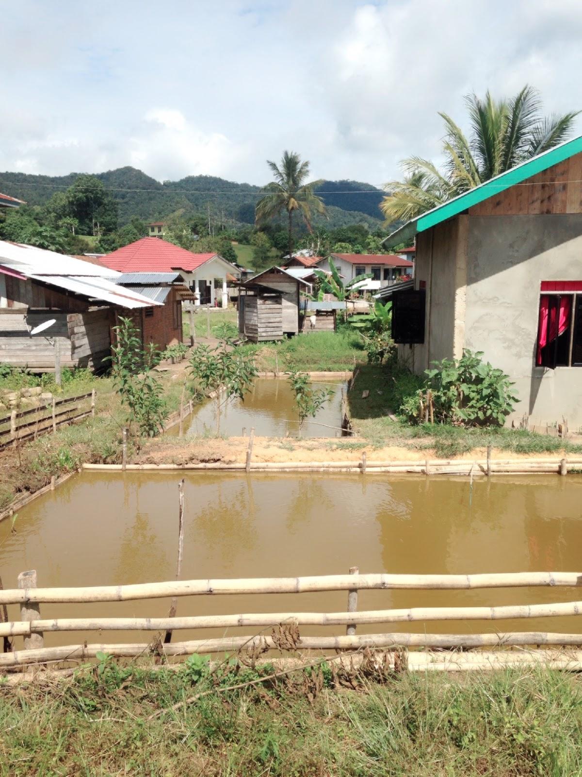 Dokumentasi Kunjungan Lapangan Kegiatan Kampung Sejahtera Long Kolam Budidaya Ikan