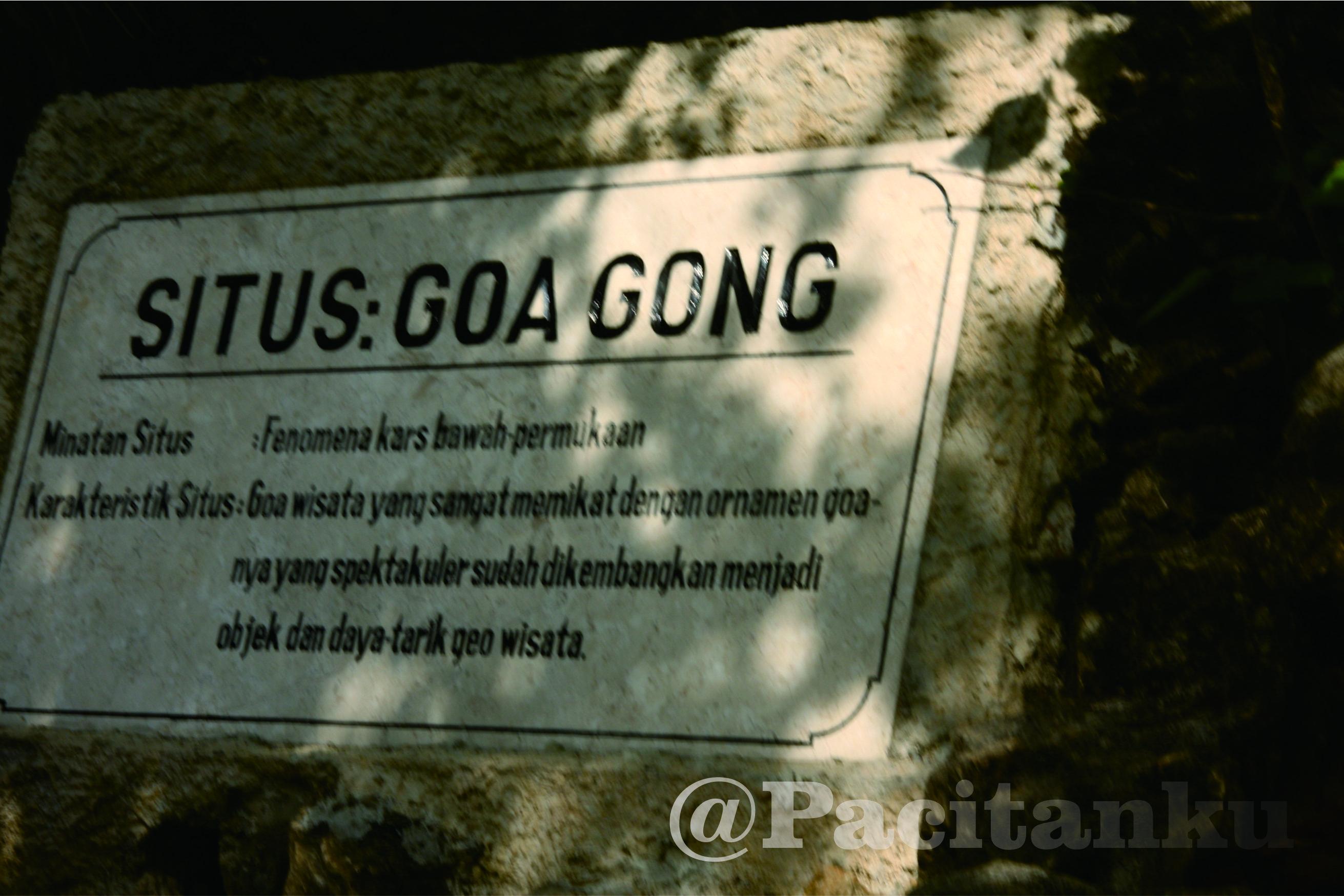 Pemkab Usahakan Kawasan Karst Pacitan Jadi Geopark Dunia Goa Gong
