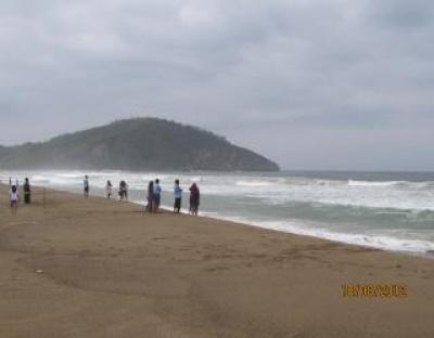Pantai Taman Pacitan Wahana Flyfox Penangkaran Penyu Flying Fox Kab