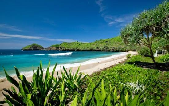 Menjelajah Keelokan Pantai Srau Perawan Pacitan Kab