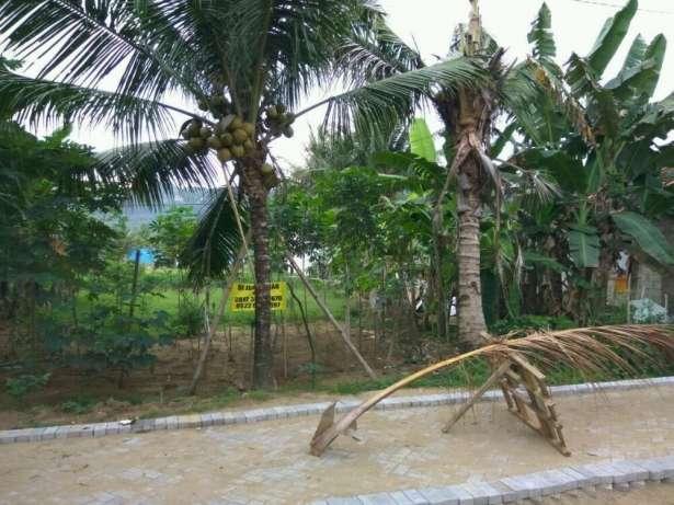Arsip Dijual Tanah 550 M2 Dekat Pantai Teleng Ria Pacitan