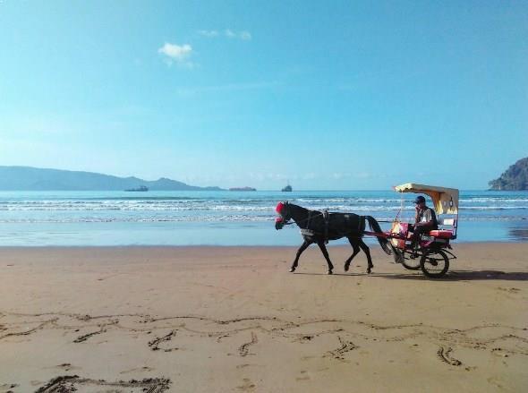 Pantai Teleng Ria Pacitan Memiliki Horizon Eksotis Berwisata Jawa Timur