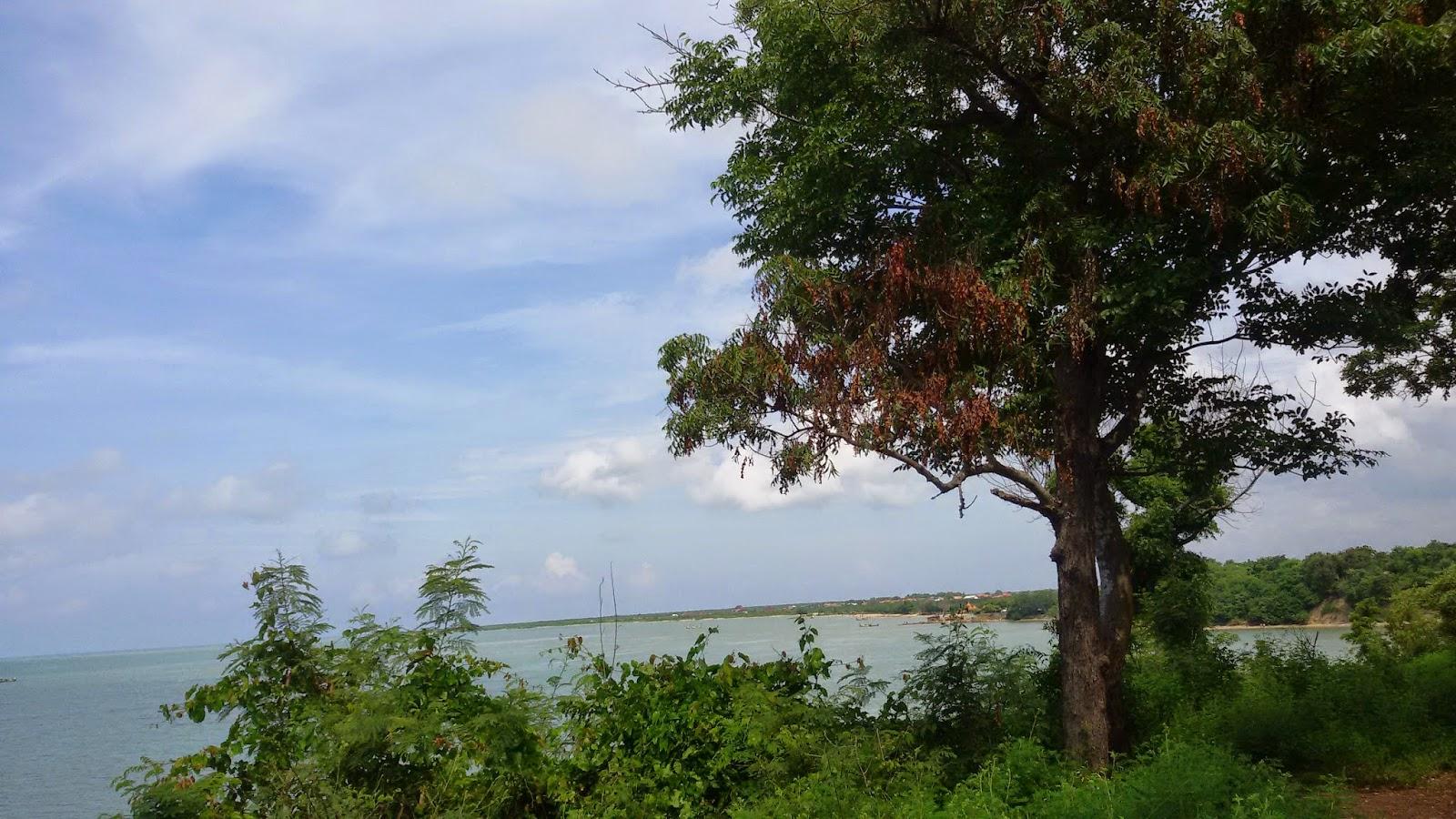 Catatan Harian Ibu Pekerja Wisata Pantai Jumiang Pamekasan Kecamatan Pademawu