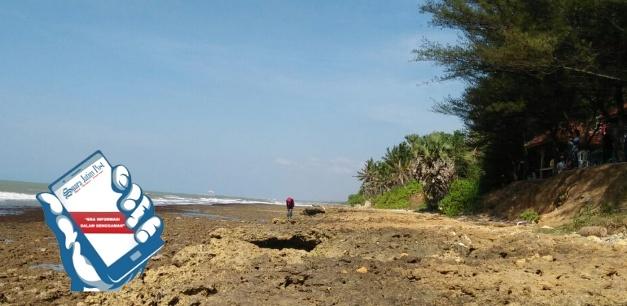 Pantai Cemara Indah Wisata Kabupaten Pamekasan Suara Jatim Desa Batu