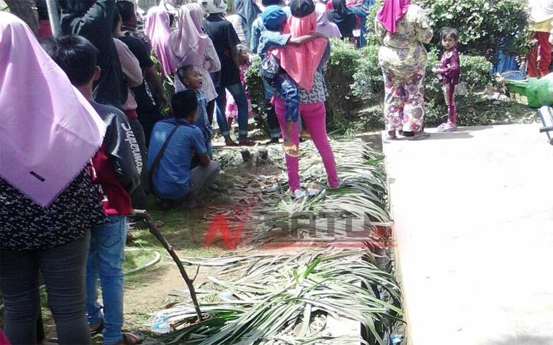 Gara Acara Bank Jatim Tanaman Bunga Taman Arek Lancor Rusak