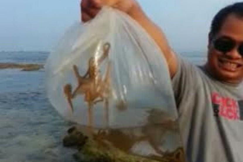 Asyiknya Berburu Gurita Pantai Carita Republika Online Wisatawan Kab Pandeglang