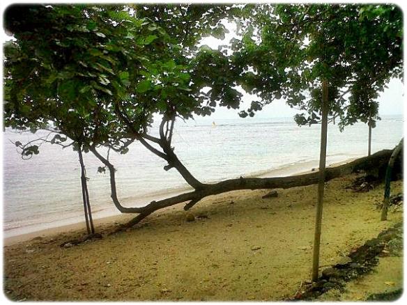 Dinas Pariwisata Pandeglang Pantai Carita Kab