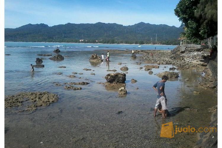 Penginapan Murah Kawasan Pantai Carita Anyer Kab Pandeglang Properti Hotel