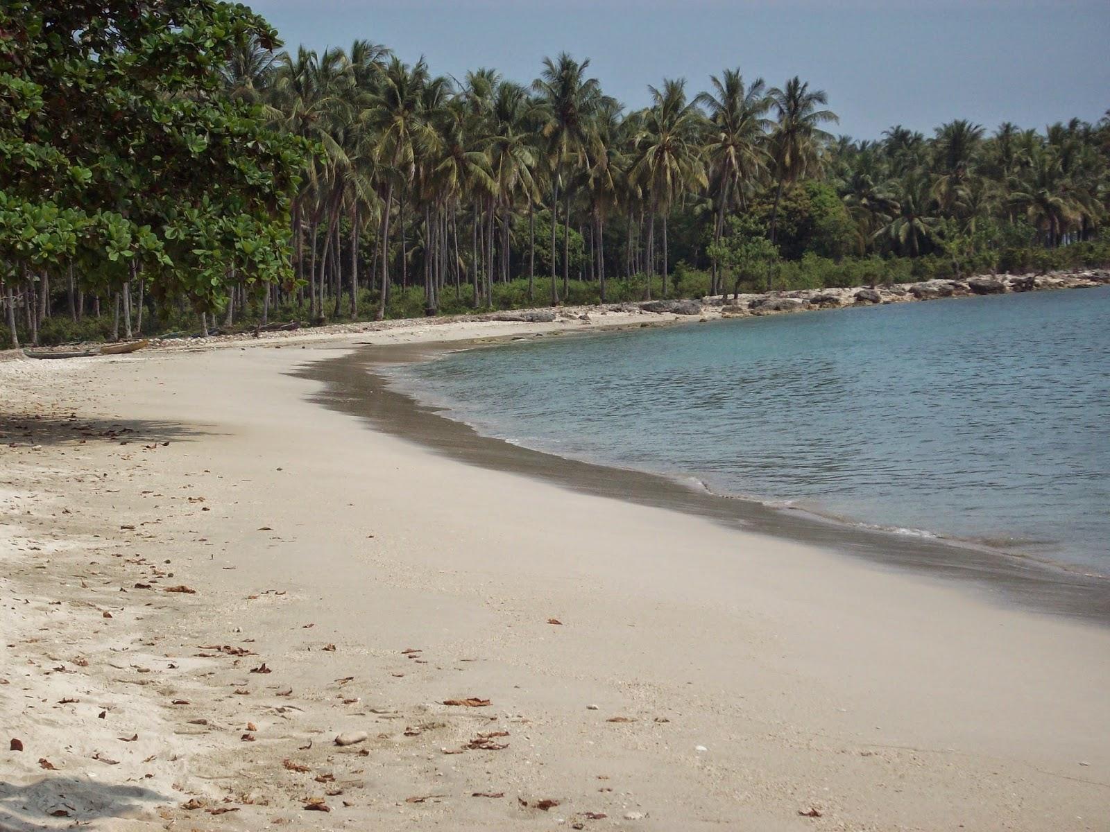 Pantai Ciputih Pandeglang Banten Ahmad Arifin Bagi Taman Nasional Ujung