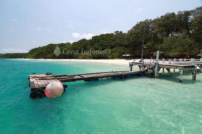 Great Indonesia Pulau Peucang Tempat Bersembunyi Hingar Bingar Panaitan Kab