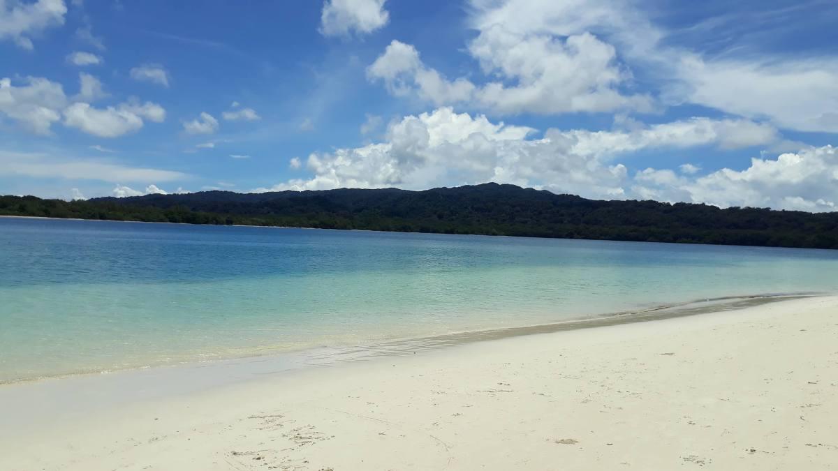 Mengintip Bidadari Pulau Peucang Budi Setiadi Panaitan Kab Pandeglang