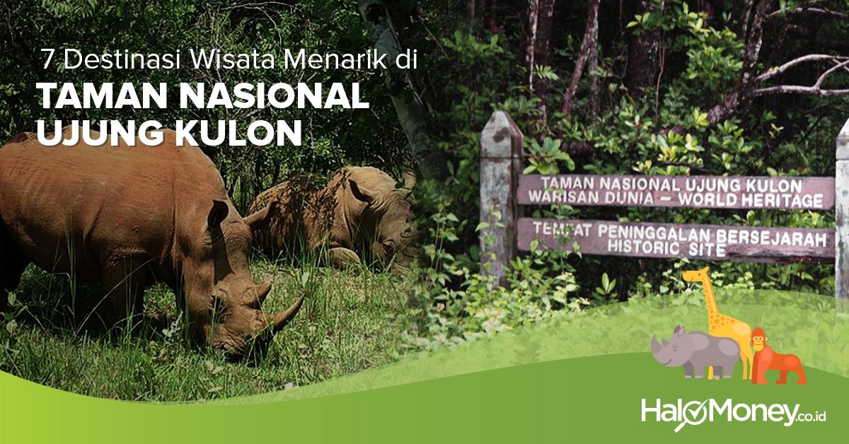 7 Destinasi Wisata Menarik Taman Nasional Ujung Kulon Halomoney Id