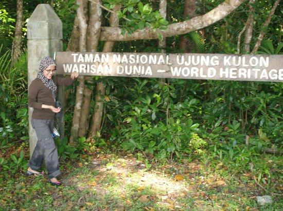 Cibom Foto Taman Nasional Ujung Kulon Pandeglang Tripadvisor Kab