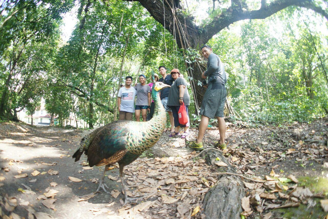 Geo Tour 2016 Menikmati Keindahan Laut Taman Nasional Ujung Kulon