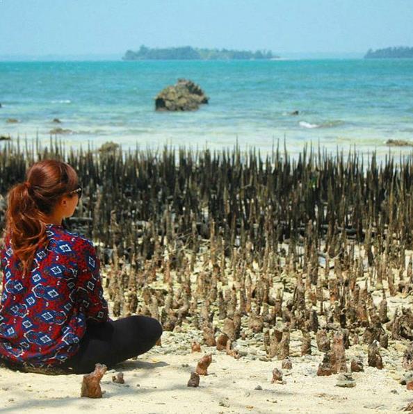 Letak Sejarah Wisata Taman Nasional Ujung Kulon Kab Pandeglang