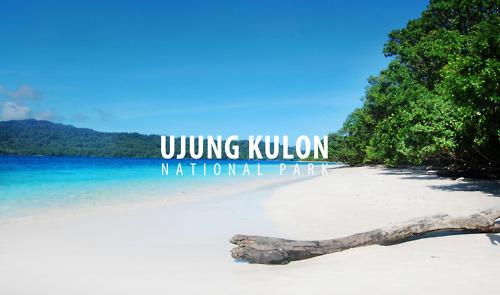 Mengenal Alam Taman Nasional Ujung Kulon Katalog Tempat Wisata Kab