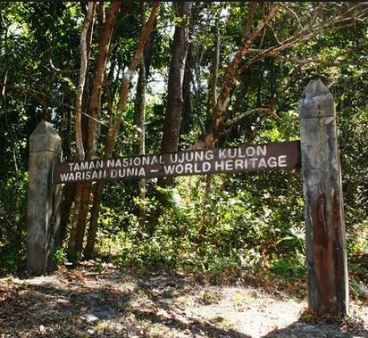 Pesona Keindahan Wisata Taman Nasional Ujung Kulon Sumur Pandeglang Banten