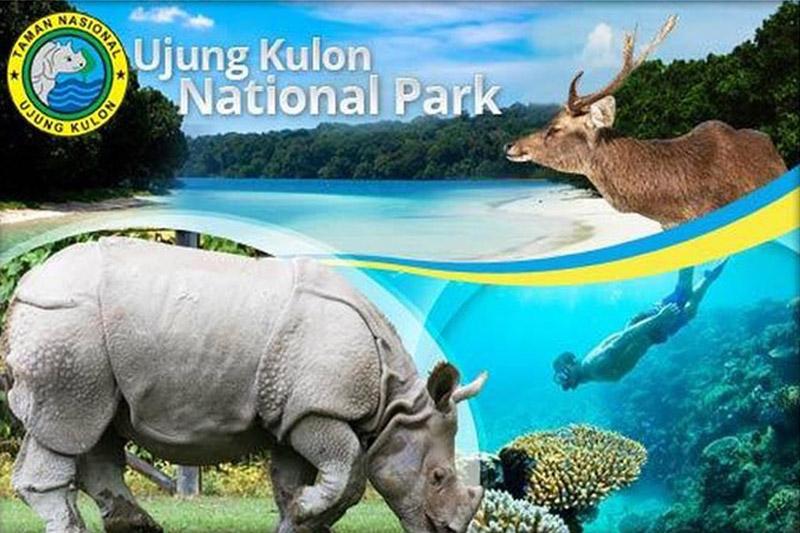 Pesona Taman Nasional Ujung Kulon Banten Rilitas Kab Pandeglang