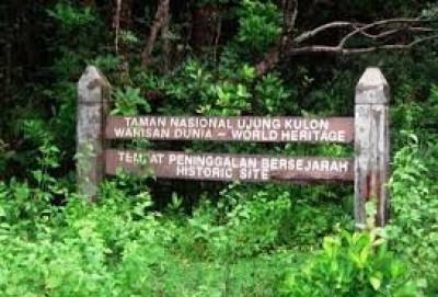 Taman Nasional Ujung Kulon Banten Wisata Tanahair Kab Pandeglang