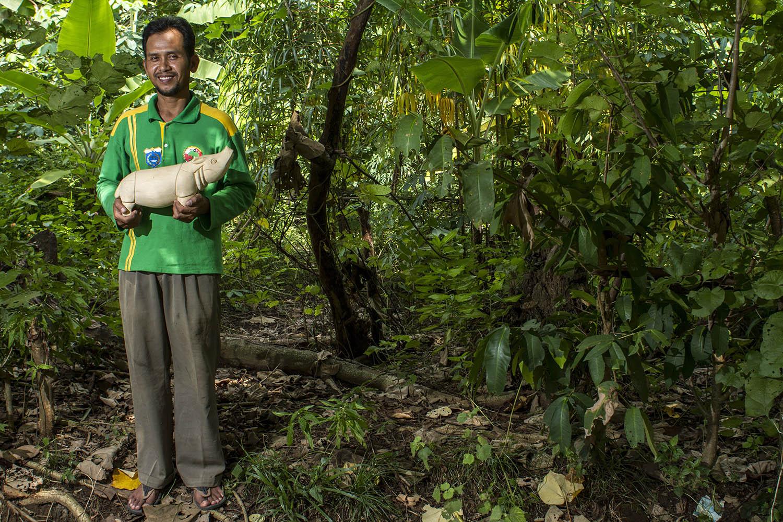 Taman Nasional Ujung Kulon Lensa Fotokita Mengabadikan Badak Jawa Kab