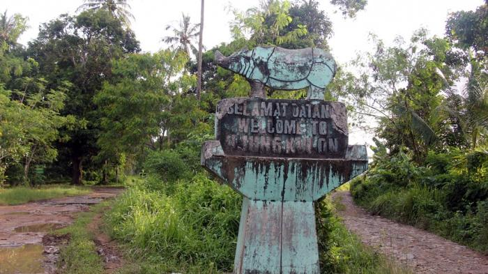 Taman Nasional Ujung Kulon Menanti Hewan Nyaris Punah Berenang Kabupaten