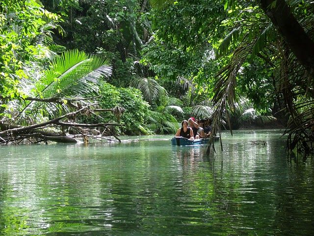 Taman Nasional Ujung Kulon Menyimpan Keragaman Flora Fauna Ketika Sampai