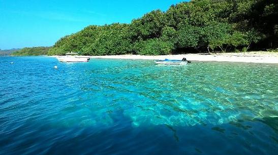 Taman Nasional Ujung Kulon Pandeglang Tempat Wisata Favorit Menunjukkan West