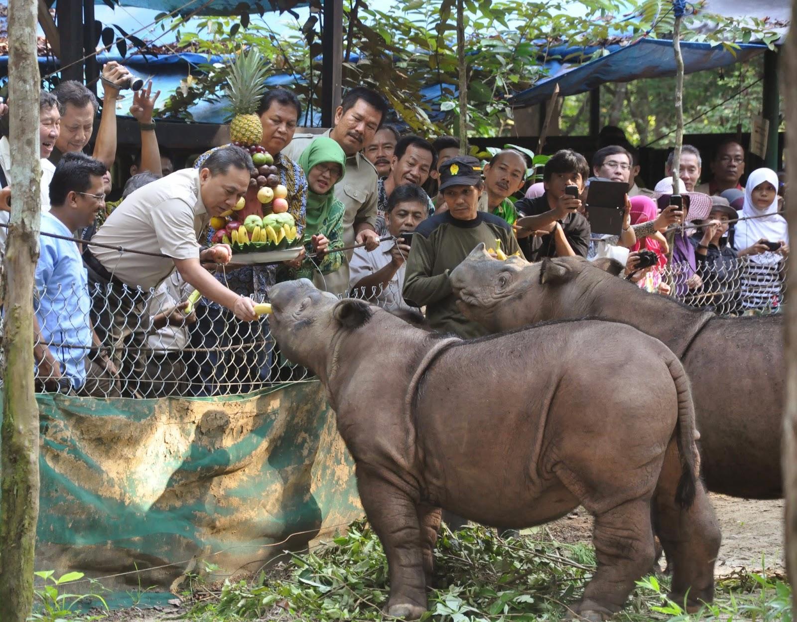 Ujung Kulon Jpg Taman Nasional Kab Pandeglang