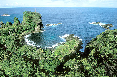 Website Resmi Kabupaten Pandeglang Taman Nasional Ujung Kulon Kab