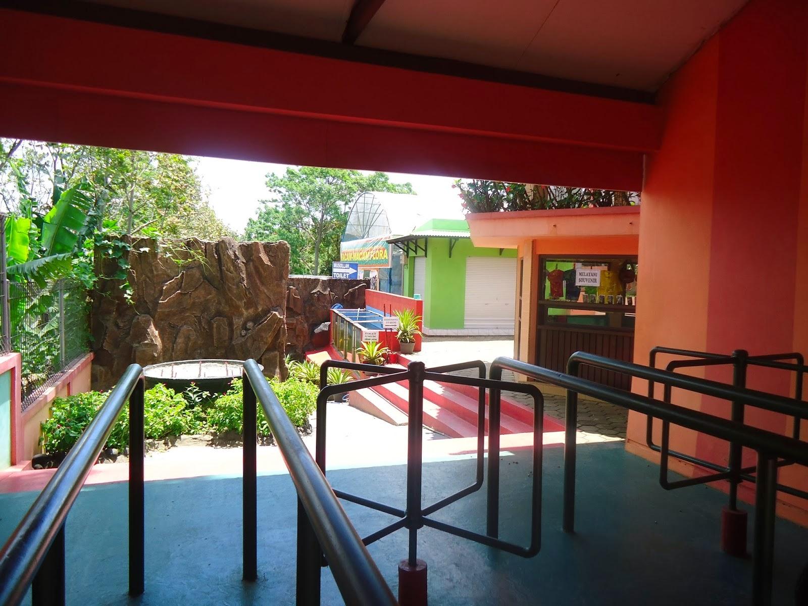 Bukit Flora Berkunjung Rekreasi Keluarga Bisa Dijadikan Ajang Edukasi Anak